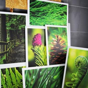 Obrazy do restauracji na płotnie