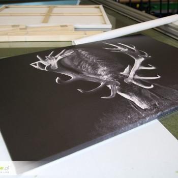 Obrazy drukowane na płotnie - doskonały prezent