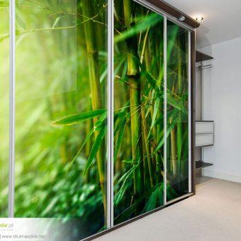 Szklane drzwi do szaf - dowolne wzory